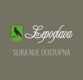 """Projektno-razvojni ured na radionici """"Poduzetnički impuls 2013""""."""